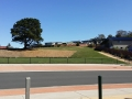 Glebe Hill Junior Soccer Oval and Public Open Space